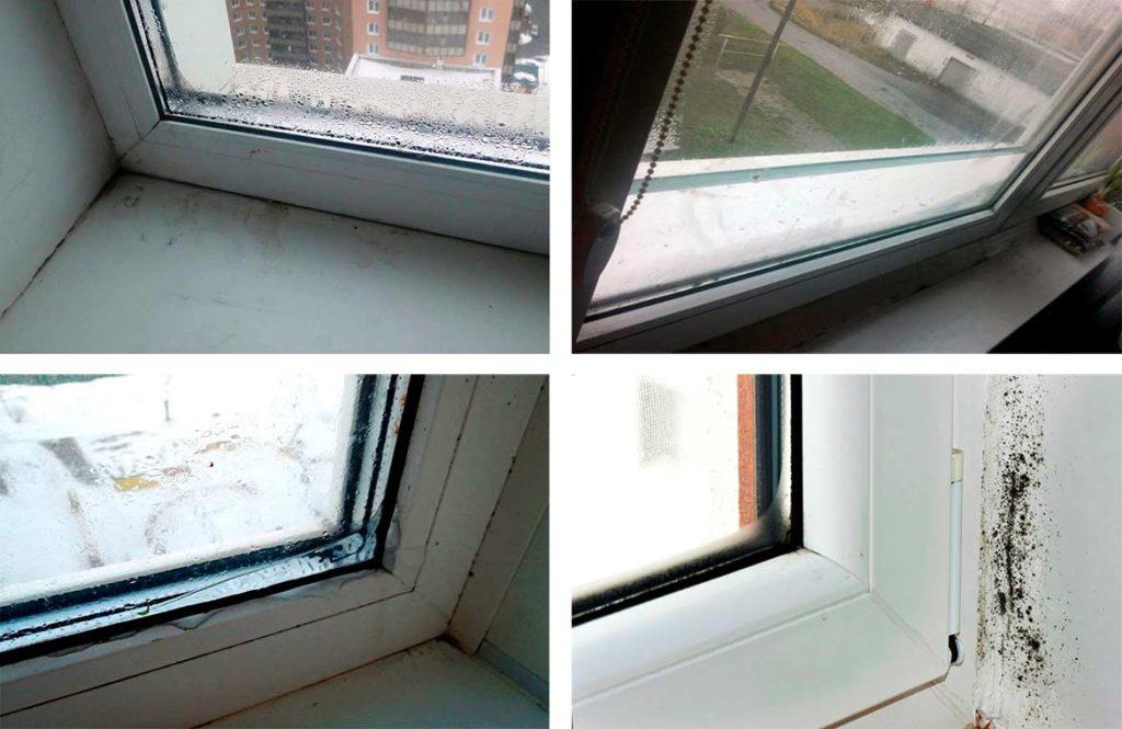 Потеют окна